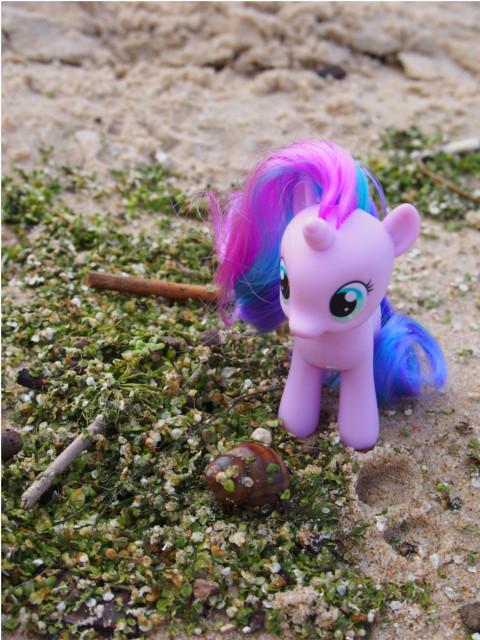 pony11