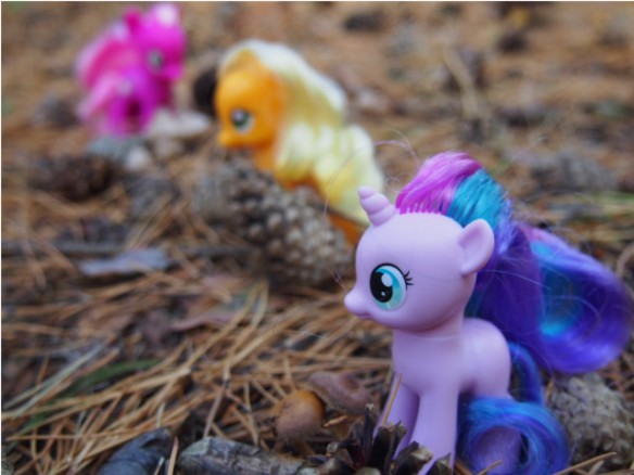 pony8